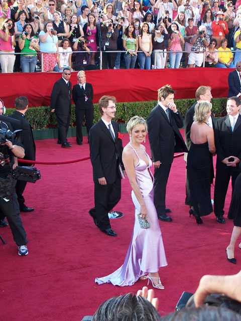 Sharon Stone at the 2004 Emmy Awards